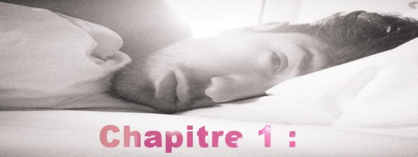 Chapitre 1 :