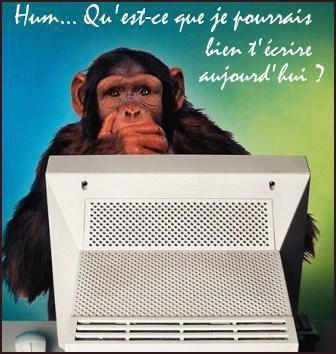 Les petites annonces du Bonobo.