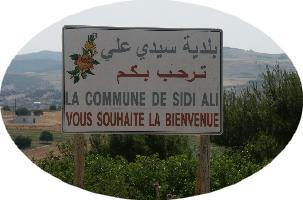 Sidi ali (Cassaigne)