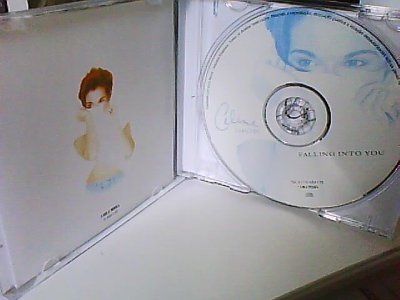 Cd Falling Into You