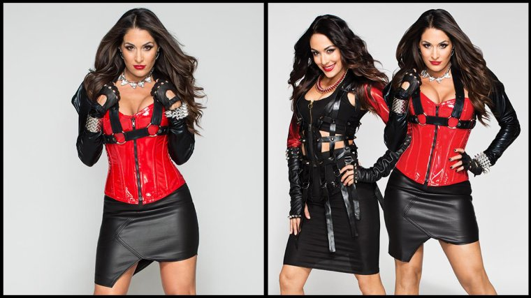 new photoshoot de brie & nikky  bellas