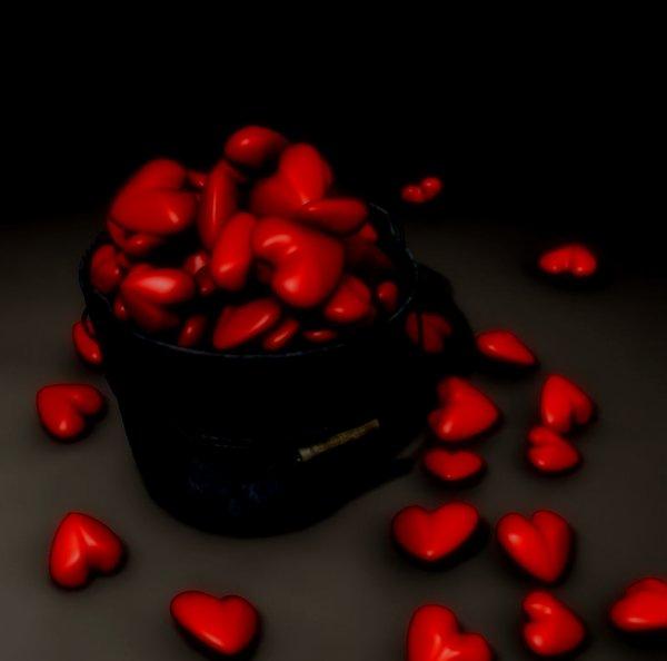 Pour toi L'amour de ma Vie