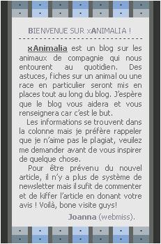 ___ _____xAnimalia___-'_____  _Ta source sur les animaux domestiques.--___Article n°2-'____Informations du blog -_'_   ___ '_'Posté le 31.08.2010'-' ____'Création' • 'Décoration' • 'Inspiration' • 'Titre' •'''_______Photo__'-__  ______Bonne visite sur xAnimalia._'___