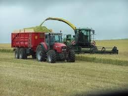 ensilage de blé le 4/07/2014