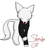 SlenderCat