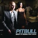 Rebelution / Pitbull feat. Akon - Shut It Down  (2009)
