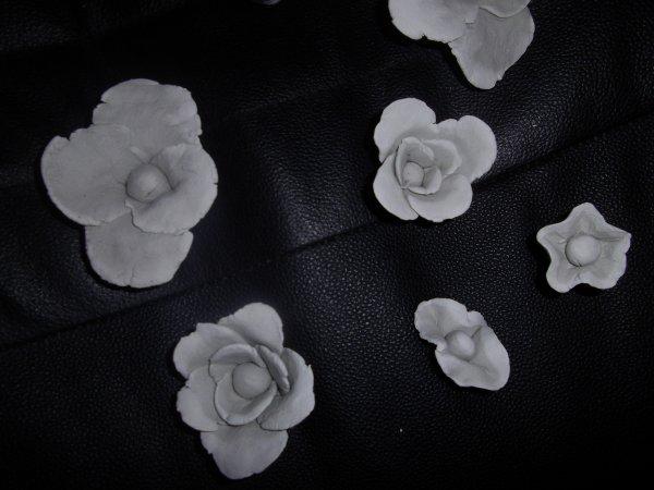 fleur en plastiroc  une pate a modeler qui durci a l'air