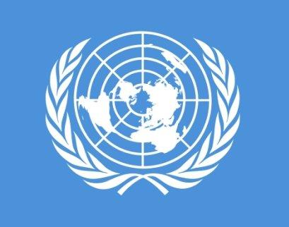 la cr ation de l 39 onu organisation des nations unies. Black Bedroom Furniture Sets. Home Design Ideas