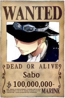 Présentation: Sabo
