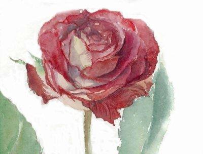 La Rose Fanee Mikou