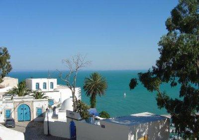 été 2011 Tunisie  (summer 2011) tunisia 'article de ahmado'