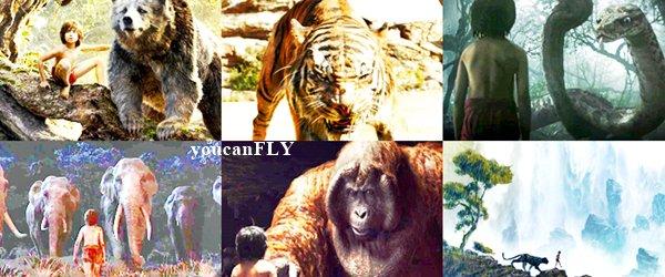 Sortie ciné : Le Livre de la Jungle