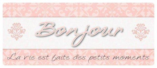 Bonjour & bienvenue sur mon blog * :)