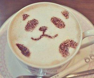 Bébé Panda *-* ♥