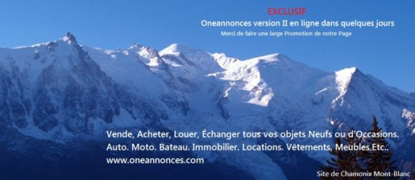 www.oneannonces.com