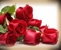 ***Le mystérieux poseur de roses (partie 1)***