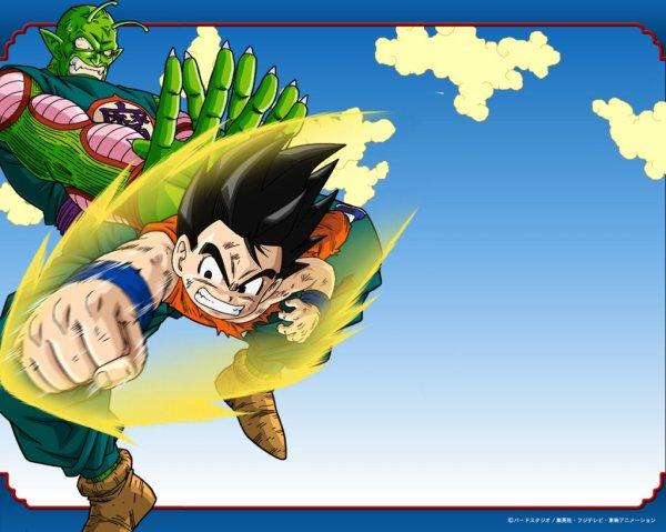Goku contre Piccolo