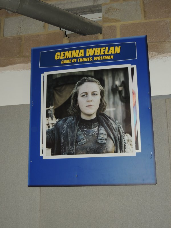 Gemma Whelan (game of thrones)