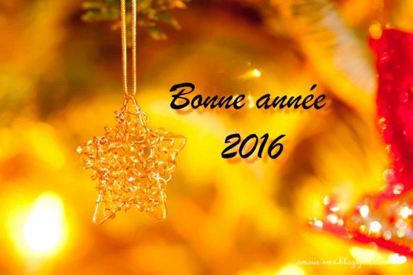 (l)(l)(l)BONNE ANNEE 2016 A TOUS MES AMIS(ES)(l)(l)(l)