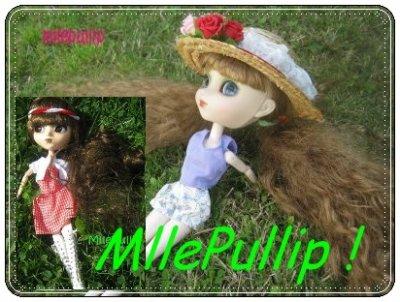Petit cadeau pour MllePullip ^^