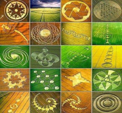 Les Crop Circles.
