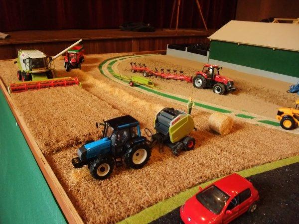 Il y a du monte dans le champs de blé !