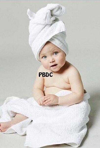 Présentations des Bébés!