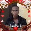 Herbino