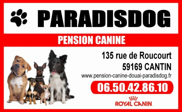 Pension Canine à Douai