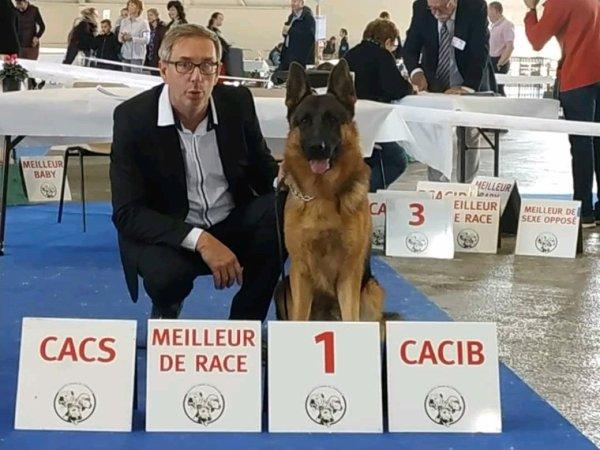 SAILLIE AVEC LE CHAMPION DE FRANCE DE BEAUTÉ !!!