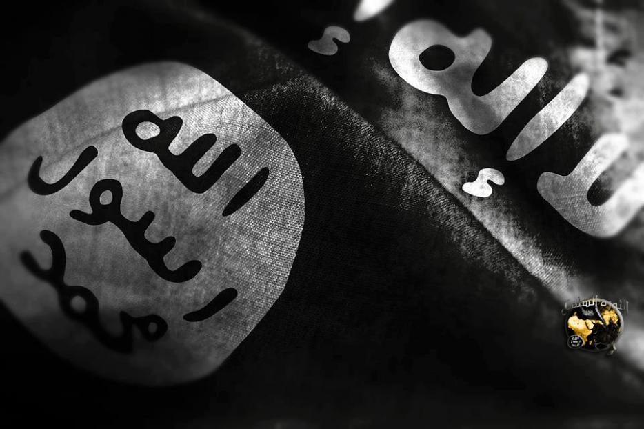 les fréres musulemans de france