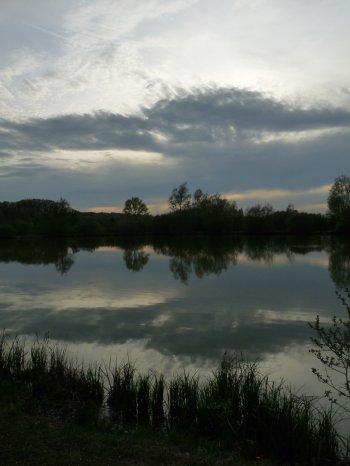 Le temps dans les étangs ...