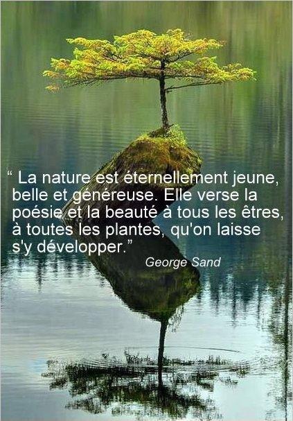 Citation ...
