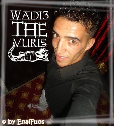 Mr.Wadià