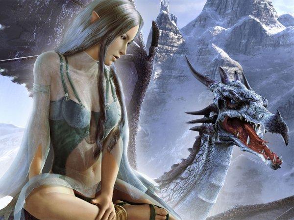 Elfe et Dragon!!!