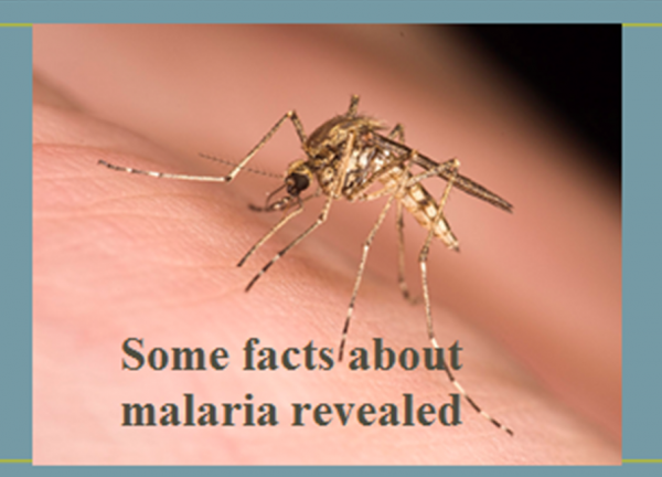 Some facts about malaria revealed