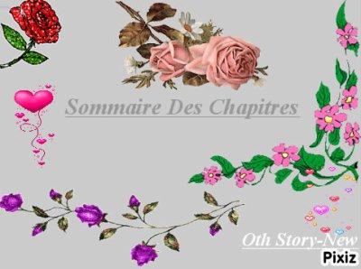 Sommaire Des Chapitres :