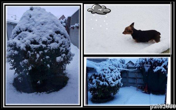 ****      la neige a fait son retour  pas trop contente ma chienne **