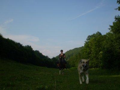 Balto, moi & Didou