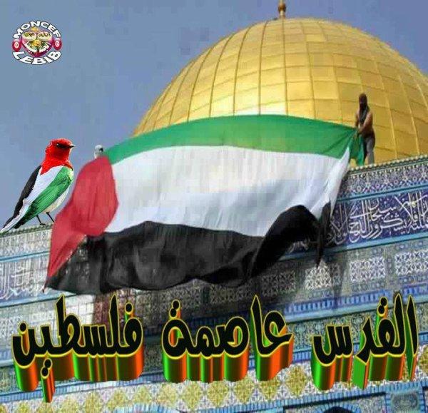 Qods Palestine