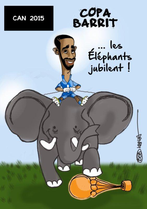 Les éléphants champions d'Afrique