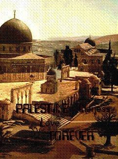 """N""""oublions pas que nous sommes tous concernés par ce qui se passe dans cette terre sacrée ! Free Palestine [♥]"""