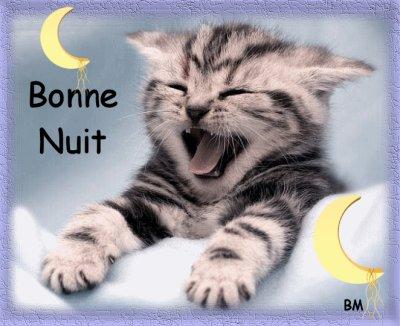 Bonne Nuit A Tous Et A Toutes BISOUS
