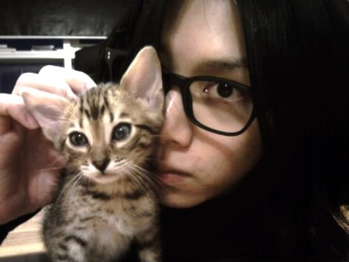 Le chat des SuJu II