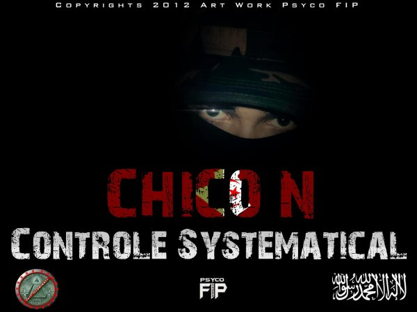 CHICO-N - Controle systematical  (2012)