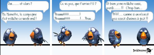 MES BIRDS DESS PERSO....... Moineau et Moinette font la causette sur leur branchette !!!
