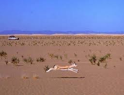 gazelle sahriennnnnnnn