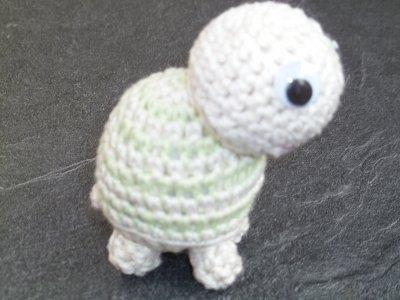 Petite tortue ...