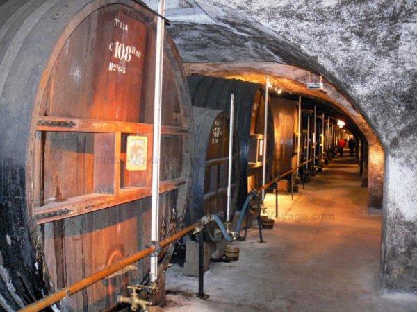 Visite des caves de la chartreuse dép 38