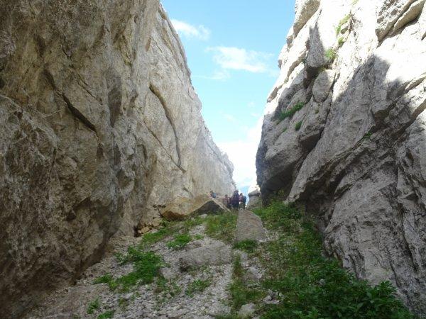 Sommet montagne d'Aujour (Dép:05)